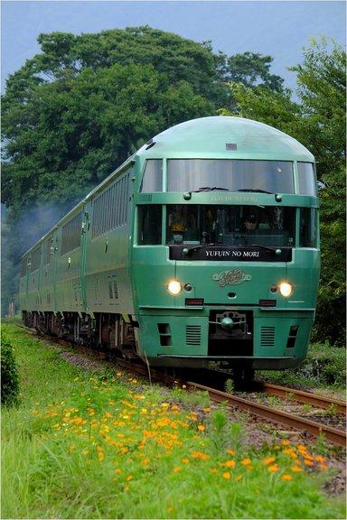 DSCF1017.jpg